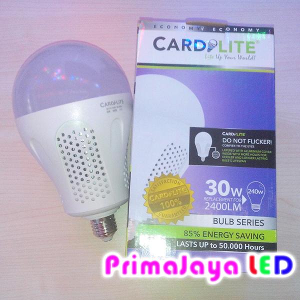 LED Bohlam Lampu Besar 30 Watt