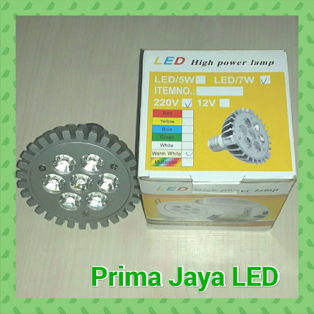 Par 30 LED Spotlight