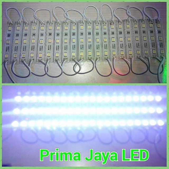 Lampu LED untuk Neon Box