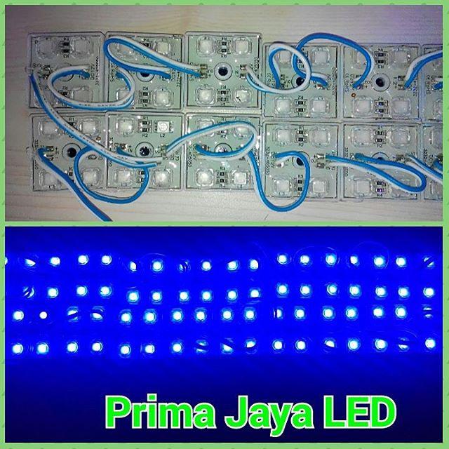 Module LED Kotak 4 Mata Biru