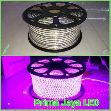 LED Flexible Warna Pink 120 Lampu