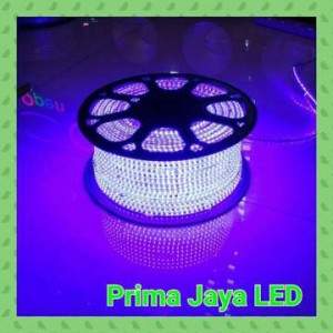 Lampu LED 2538 Flexible AC 220 Volt Biru