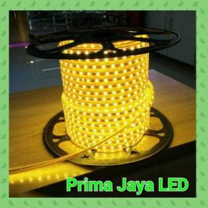 Lampu Selang LED 5050 Warm White Gold