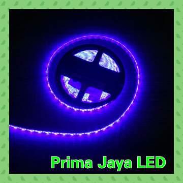 LED Strip Biru 5050 IP44