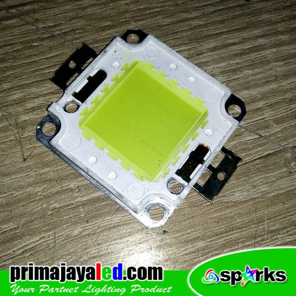 Chip Lampu LED 20 Watt