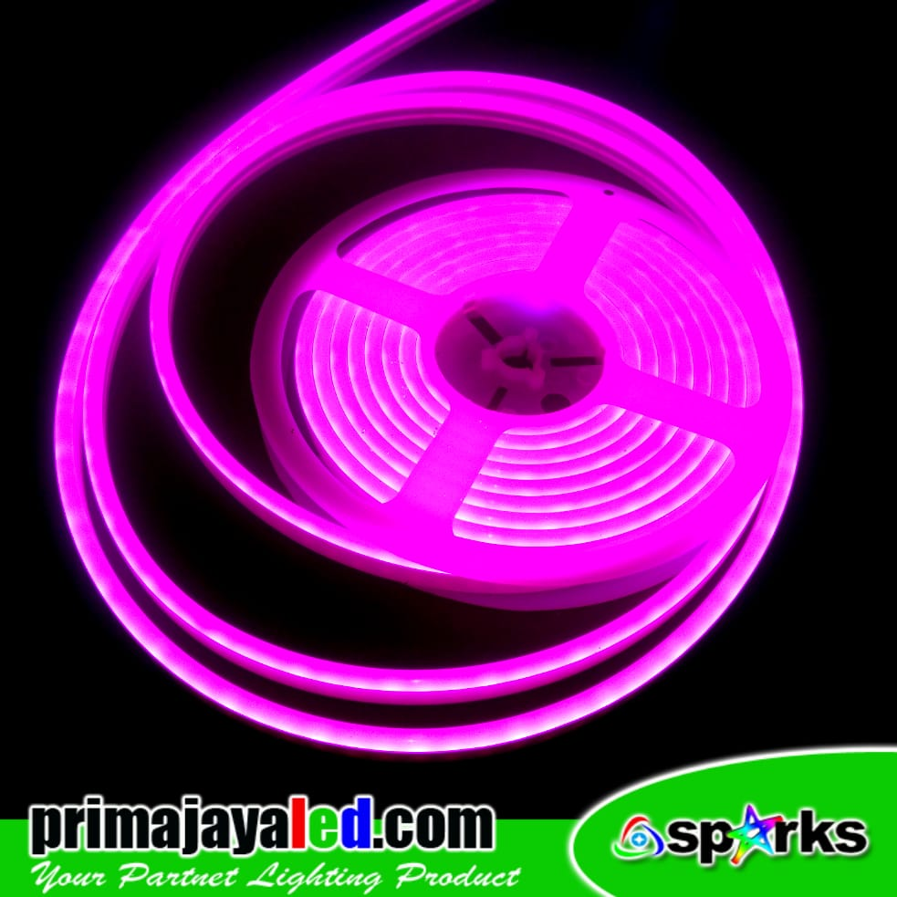Neon Flexible LED Strip 12 Volt